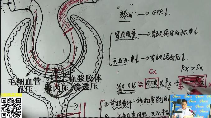 傲视天鹰医学考研练习:胆固醇合成的调节