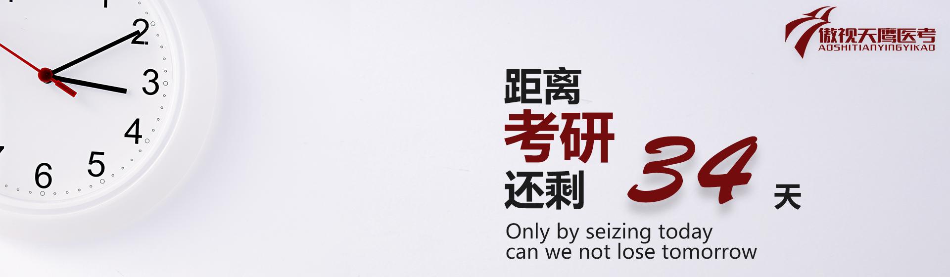 英语句子翻译练习  DAY 1