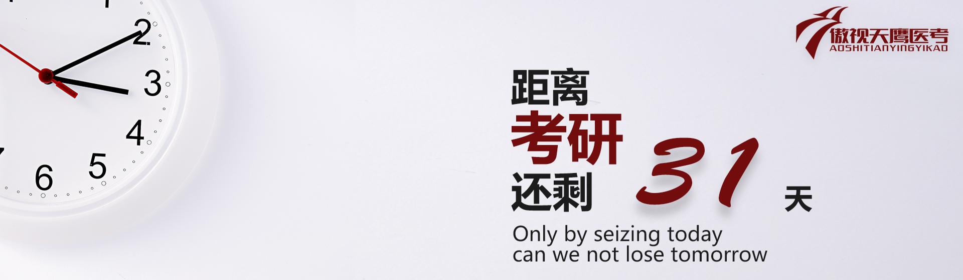 英语句子翻译练习 DAY 4